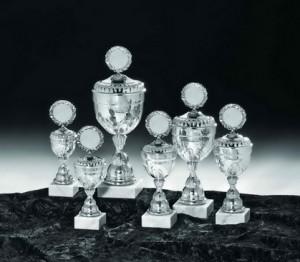 53230 Pokale
